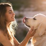 Will Our Pets Go To Heaven?