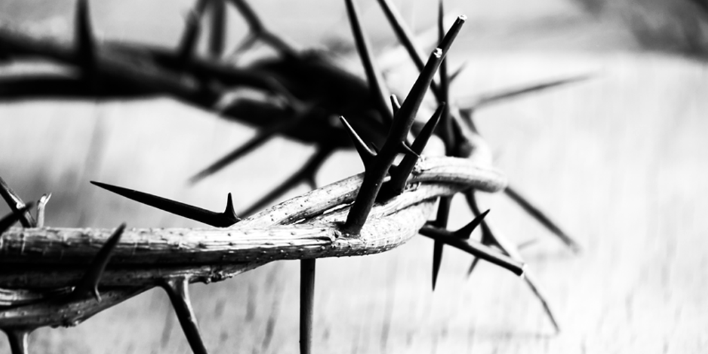 Crown of Thorns - 865