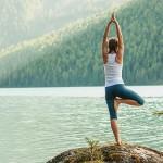 The Divine Life Society/Integral Yoga Institute