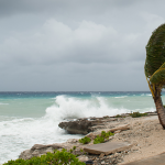 Hurricane Genesis