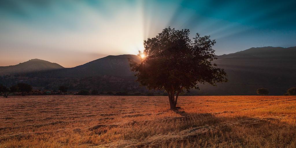 Understanding the Nature of God