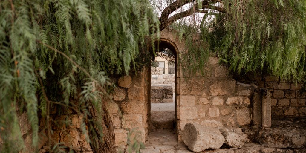 Bathsheba | Women in Jesus' Genealogy