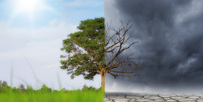 Weather or Climate Change?