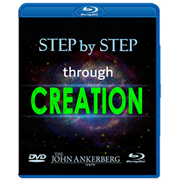 Step by Step through Creation-0