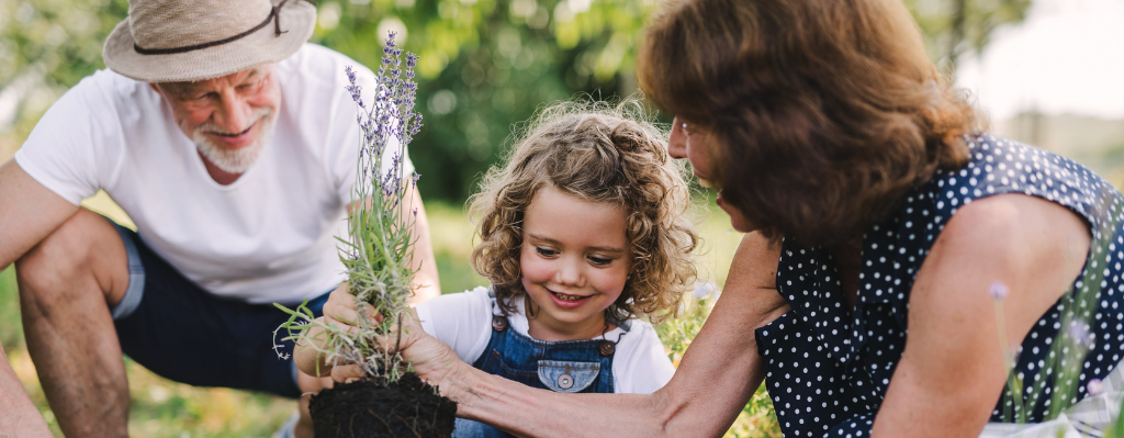 God has no Grandchildren AGL Blog Post