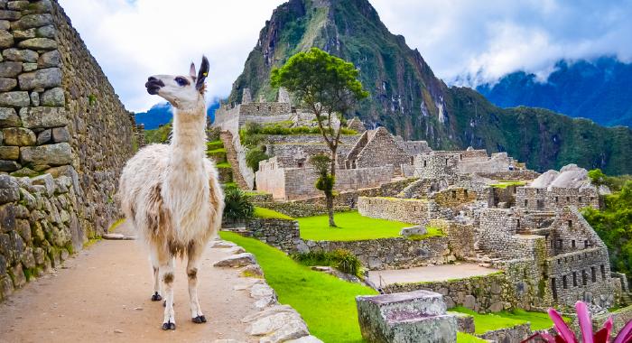 Untitled-1_Peru