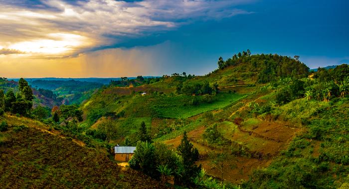 Untitled-1_Uganda