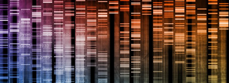 How Does DNA Code Support Intelligent Design?